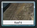 Roof 6